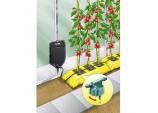 'Big Drippa' Drip Watering Kit